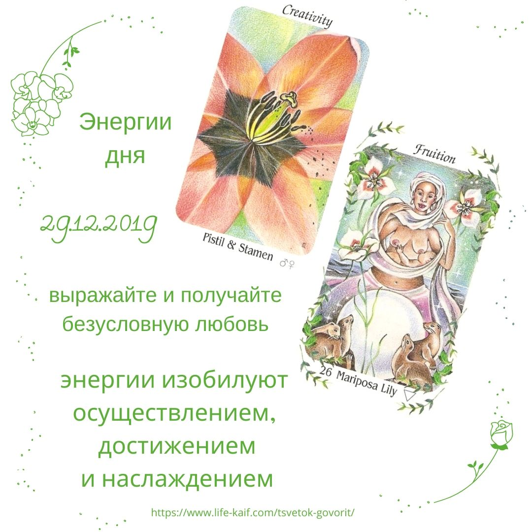 карта дня Цветок говорит