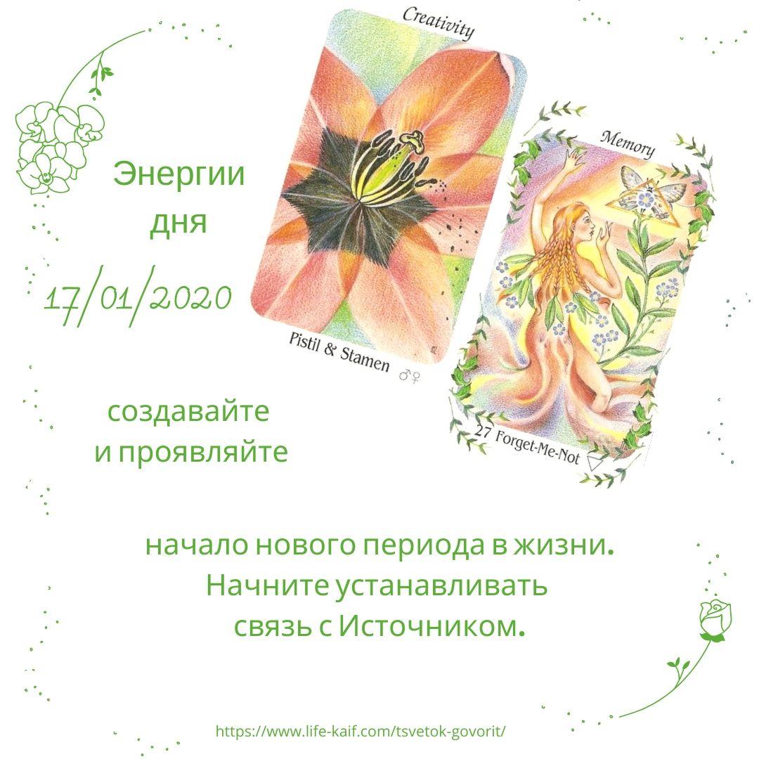 карта дня Цветок говорит 17012020